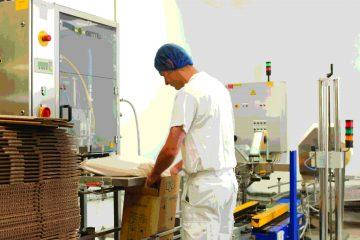 Algist Bruggeman jobs
