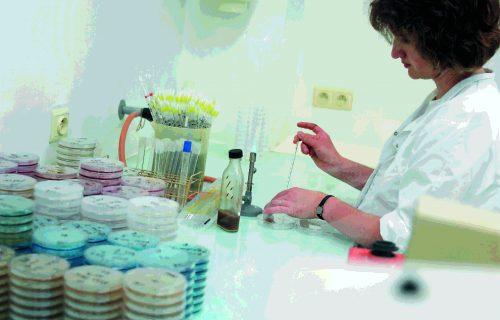 Algist Bruggeman le processus de production labo